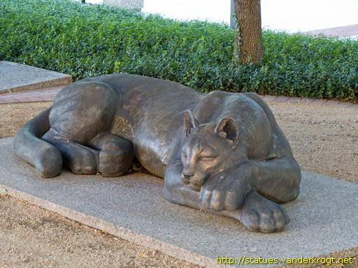 Fort Worth /  The Sleeping Panther