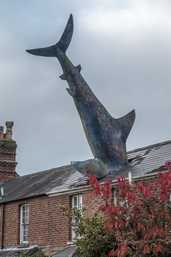 The Headington Shark (Oxford, Great Britain)
